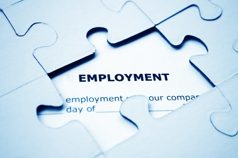 Employment Puzzle